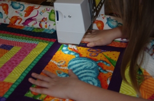 free motion quilting 1